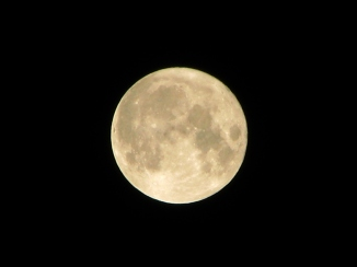 Credit: https://en.wikipedia.org/wiki/Full_moon#/media/File:Howling_at_the_Moon_in_Mississauga.jpg